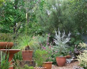 Garden Design Australian Plants Society Victoria